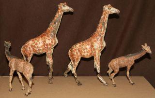 Giraffen Familie,  4 Stück,  Elastolin,  Rar,  Natur,  Figur,  Tiere Bild