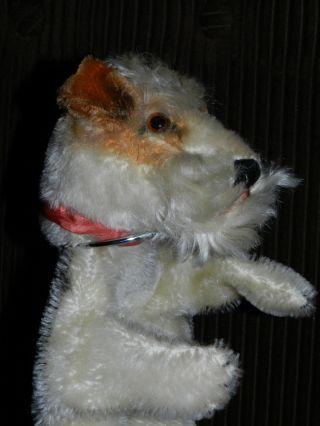 Orginal Steiff Handpuppe Alt Hund Terrier Puppentheater Bild