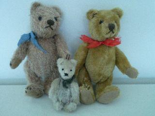 Konvolut Alter Teddybären - Dachbodenfund,  Marke Unbekannt - Steiff,  Etc.  ? Bild