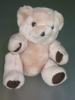 Alter Teddy,  Teddybär,  Helles Fell Mit Dunklen Tatzen Und Aufgenähten Krallen Bild