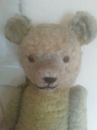 Alter Teddy Bär Gr.  50 Cm Bild