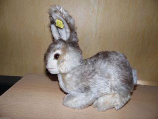 Steiff Hase Pummy,  Mit K/f Nr 2325,  05,  Drehbarer Kopf,  Rabbit,  24x22cm Bild