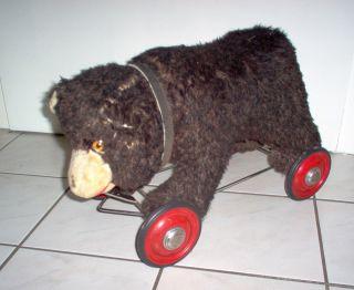 Bär Auf Rädern - Großer Plüschbär Mit Blechrädern - 50 Cm Lang - 30 Cm Hoch Bild