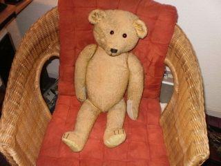 Antikspielzeug 1 Alter Teddy Ca 55 Cm Lang Marke? Bild