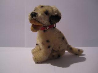 Steiff Dalmatiner Hund/ / Alt / Mohair / Mit Knopf & Fahne Bild