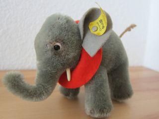 Steiff Elefant Alt Mit Knopf Decke Schild 0500/10 Bild