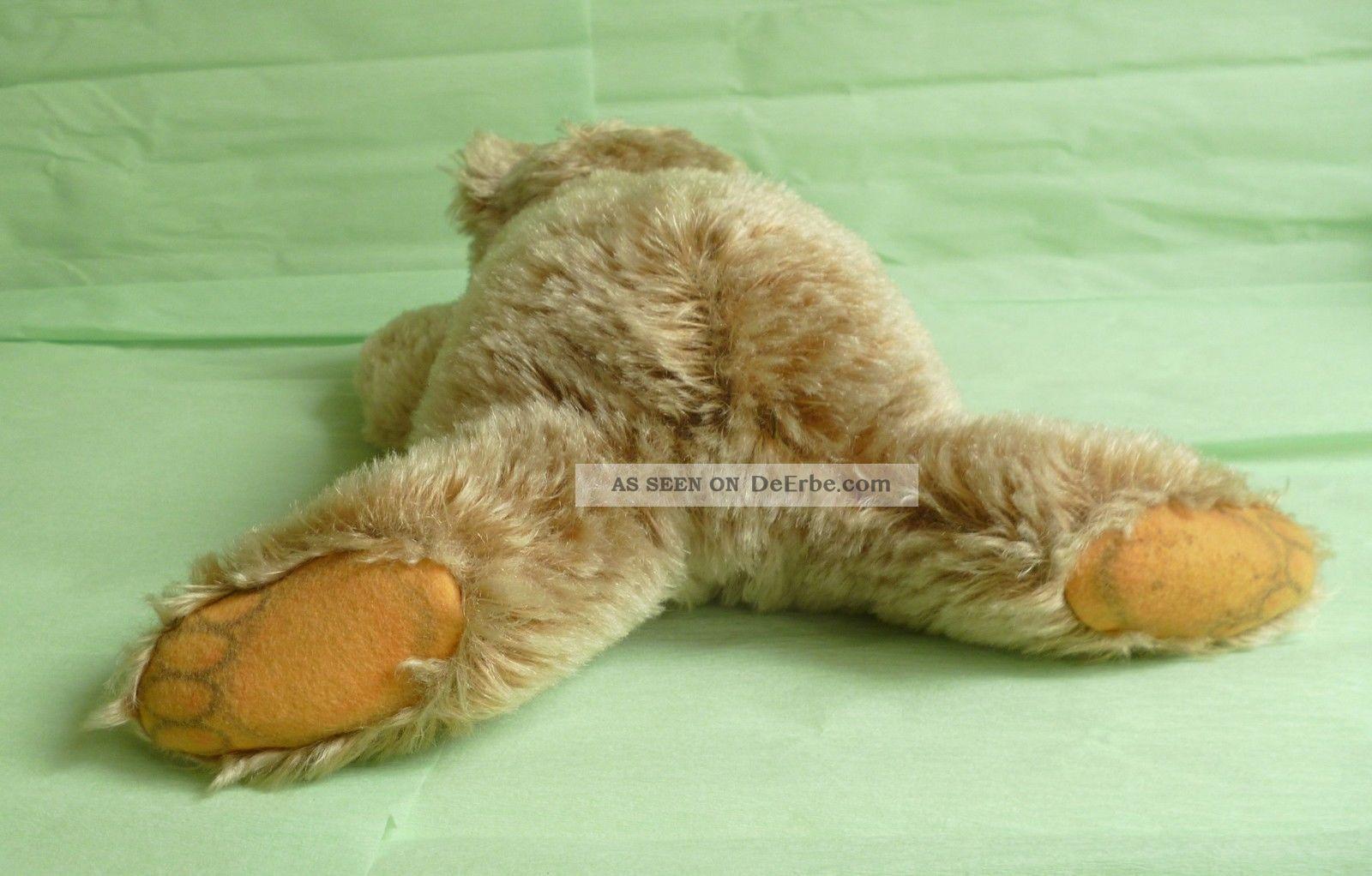 steiff teddyb r floppy zotty 28 cm teddy b r mit knopf und fahne. Black Bedroom Furniture Sets. Home Design Ideas
