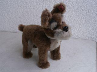Schuco Hund Bello - Ca.  23 Cm Hoch - Sehr Alt Antik,  60 Er Jahre.  Aus Der Vitrine. Bild