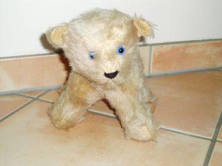 Alter Plüsch - Teddybär Aus Muttis Nachlass Bild