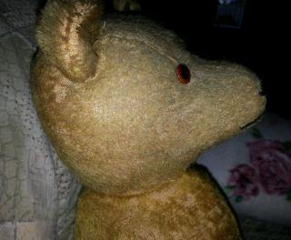 Teddybär Teddy Bär Antik Sehr Alt Vermutlich Hermann Bild