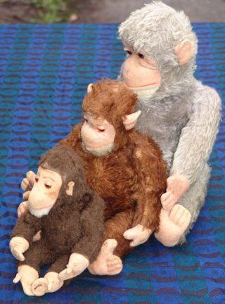 3 Alte Affen - Mohair - Affenfamilie - 24 / 32 / 45 Cm - Bespielt Bild
