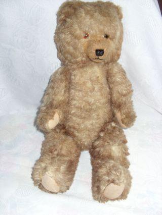 Antiker Teddy Teddybär Mohair 48 Cm Bild