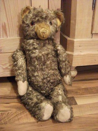 Großer Alter Teddybär,  Alter Bär,  Stofftier Antik Bild