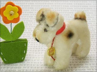 Hermann Alter 10cm Kleiner Fox Terrier Hund Id Old 3,  9 Inch Small Terry Dog Bild