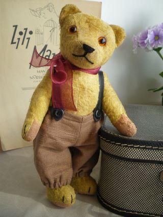 Putziger Alter Kleiner Teddy BÄr,  26 Cm,  1930er Jahre Bild