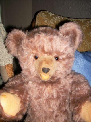 Fröhlicher,  50cm Großer,  Alter Teddybär - Zotty - Typ Aus Den 60ziger Jahren Bild