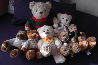 8 Teddybären Douglas Bild