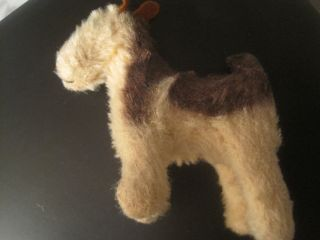 Teddy Antik Steiff Alt Sammler Hund Struppi Bild