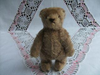 Alter Teddy Teddybär Ohne Krallen Ohne Knopf Steiff?glasaugen Gestick.  Nase 14cm Bild