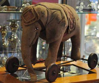 Rarität: Antiker Zirkuselefant Auf Rädern Um 1900 Sucht Neues Zuhause Bild