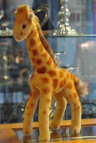 Süsse Steiff Giraffe Aus Den 60ern Sucht Neues Zuhause Bild