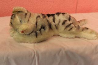 Altes Steiff Tier Schlafende Katze Groß Mit Knopf Und Fahne Bild