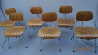6 X Stühle Se 68 Wilde & Spieth Eiermann Buche Chrom Originale 50er/ 60er Jahre Bild