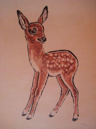 Bild Blatt Bogen Druck Rehkitz Bambi Signiert Hertha Peuse 1950 Ohne Rahmen Bild