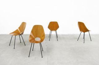 4x Stühle Vittorio Nobili 1955 Dining Chair 60er 50er Mid - Century Modern Italy Bild