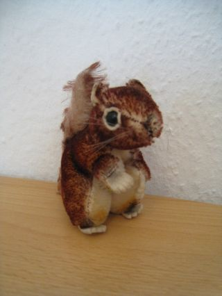 Steiff Eichhörnchen Perry,  50er/60er Bild
