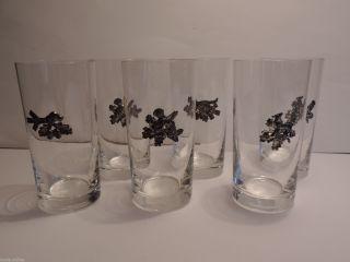 6 Gläser Glas Jagd Reh Fuchs Auerhahn Hund Mit Zinnapplikation Bild