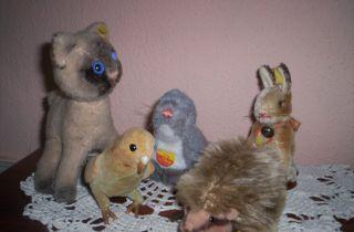 Konvolut 5 Tierchen Von Der Fa.  Steiff Bild