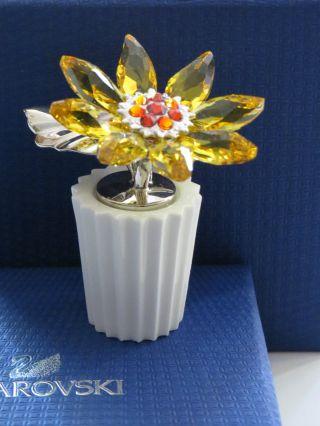 Swarovski Blume Mit Top.  H - 6cm. ,  B - 6cm. ,  T - 4cm 100 Bild