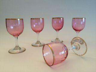 Antike Stengelgläser 5 Stk Sherry Glas Aperitif Rosa Gold Konvolut Geschenk Bild