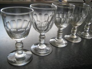 6 Antike Gläser Sherryglas Weinglas Facettenschliff Um 1880 Bild