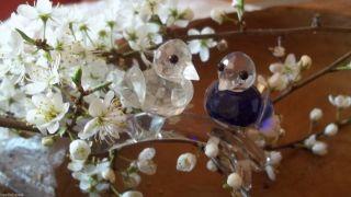 Klaus Und Bärbel Drexel - Glaskristall Vogelpaar - Blau Und Weiß - Frohes Fest Bild