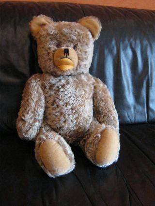 Alter Xxl Grisly Gemarkt Teddy - Bär 63 Cm Gelenkbär Zotty - Art.  Fell Teddybär Bild