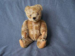 Alter Teddy Teddybär Mit Druckstimme Bild