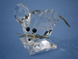- - - - - - - - - - Wunderschöne Große Swarovski Maus Aus Kristall - - - - - - - - - - Bild
