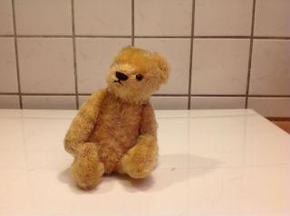 Schuco TeddybÄr Ca 5 6ziger Jahre Bild