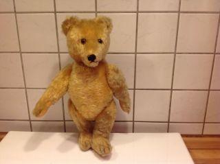 Uralter Teddy,  Fa.  Bing,  Mohair Gelb Bild