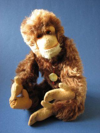Teddy Hermann Affe Schimpanse Mit Druckstimme Bild