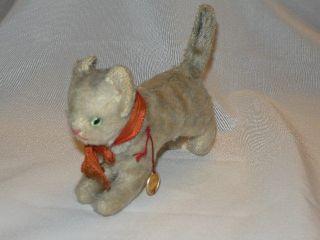 Hermann Teddy Alte Katze Nostalgisch Tigerkatze Tiger Bild