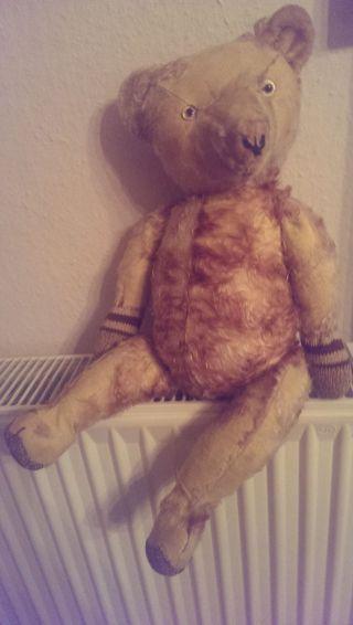 Sehr Süßer Alter Teddybär Teddy Bild