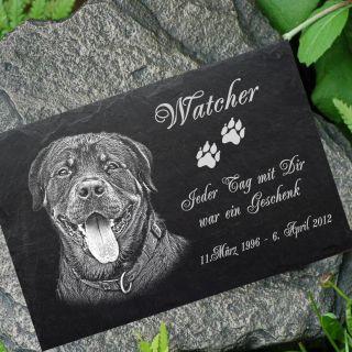 Grabstein Tiergrabstein Gedenkstein Hunde Hund - 016 Fotogravur ◄ 20 X 15 Cm Bild