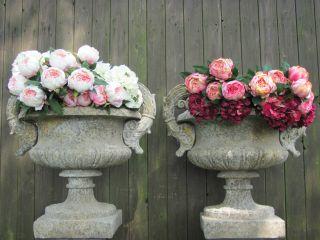 Frankreich Garten Kunst Prunkvolle Henkel Jardiniere 160kg Pflanzgefäß Park Vase Bild