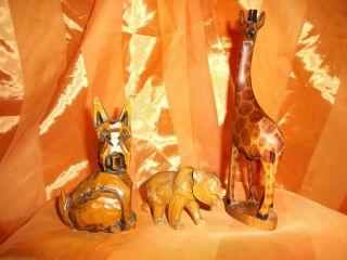Holz Schnitzerei - Tierfigur - Giraffe - Hund - Bär Handarbeit Bild
