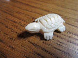 Nachlass Rar Alter Glücksbringer Die Schildkröte Aus Echtem Bein Gefertigt Bild