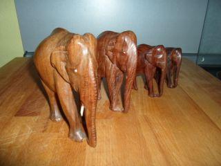Orginal Holz Elefant Herde Elefanten 4 Tier Geschnitzt Bild
