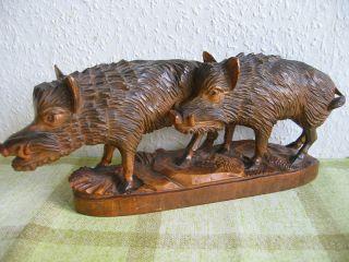 Wunderschöner Handgeschnitzter 2 Wildschweine Holzfigur - 1940. Bild